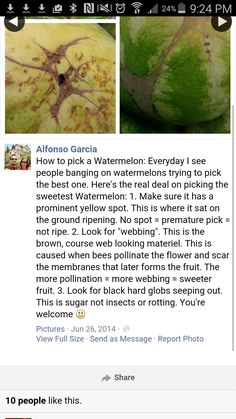 Tips for picking the most ripe and sweet watermelons.