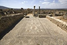 View of a mosaic in situ in a house in Volubilis