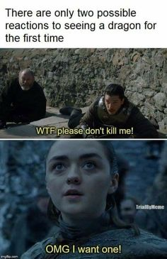 reactions to seeing a dragon, Game of Thrones. - First reactions to seeing a dragon, Game of Thrones. -First reactions to seeing a dragon, Game of Thrones. - First reactions to seeing a dragon, Game of Thrones. Game Of Thrones Meme, Gsme Of Thrones, Game Of Thrones Books, Game Of Thrones Dragons, Game Of Thrones Stuff, Game Of Throne Lustig, Quotes Sherlock, Dragon Sports, Game Of Thrones Wallpaper