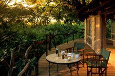 Lake Manyara Tree Lodge - Hotels - Lake Manyara National Park - Tanzania - Africa - Travel