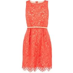 Lace Dress it would look cool with neon colors Coral Lace Dresses, Grad Dresses, Cute Dresses, Summer Dresses, Peach Dresses, Short Dresses, Vestidos Color Coral, Rich Girls, Look Cool