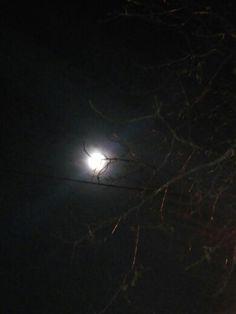 Aynı anda dolunayı izleyemediğimiz istanbulun apartmanlatını sikiyim. Göreceksin hemde böyle benim gözümden, sen görmek istersinde ben göstermem mi.? Çekmem mi sana ayın her halini her gece kendi gözümden -N