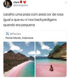 Tem no Caribe tbm Memes Status, Fb Memes, Funny Memes, Jokes, Amazing Nature, Travel Pictures, Nostalgia, Places To Visit, Around The Worlds