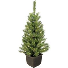 Pre-Lit 4' Norway Entryway Artificial Christmas Tree, 35 Clear Lights