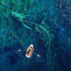 """Dragon Bones by artist Stefan Koidl. Check more at website. "" ""Dragon Bones by artist Stefan Koidl. Dragon Bones, Dragon Art, Fantasy Dragon, Fantasy Artwork, Fantasy Concept Art, Fantasy Paintings, Dragons, Digital Draw, Fantasy Inspiration"