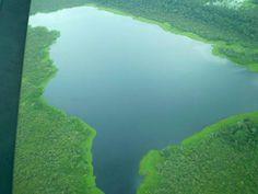 Foto tirada de um monomotor sobrevoando de Tefé a Manaus (AM), por Ricardo Camargo #Brasil #Brazil #natureza #nature #picture #photo #fotografia #paisagem #landscape #Amazonas #lago #lake