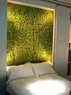 schlafzimmer moos wand idee pflanzen