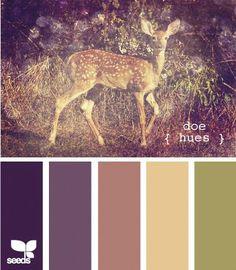 design seed global color palette pinterest | Seeds Design | Color Palette |