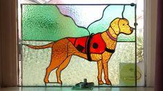 Portrait of Isla the Vizsla, Berkshire rescue dog. By Maria Curwell…