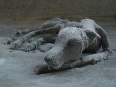 Paper Mache Sculpture, Garden Sculpture, Lion Sculpture, Helen Thompson, Mummy Dogs, Textiles, Textile Art, Holi, Elephant