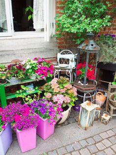 City-guide de Copenhague: toutes mes bonnes adresses Vintage Buffet, Guide, Copenhagen, Plants, Camping, Car, Travel, Viajes, Copenhagen Travel