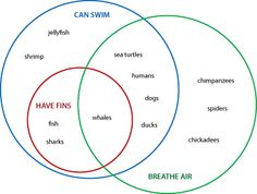Venn Diagrams and Higher Order Thinking