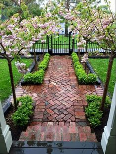 landscape on a budget front yard ~ landscape on a budget ; landscape on a budget front yard ; landscape on a budget diy Front Yard Design, Front Yard Landscape Design, Front Yard Ideas, Front Sidewalk Ideas, Design Jardin, Small Backyard Landscaping, Courtyard Landscaping, Backyard Ideas, Backyard Pavers
