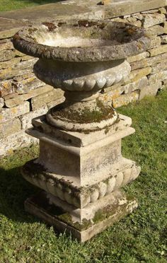 A weathered composition-stone urn on plinth, the urn with good planting depth and the combination well established overall with moss and lichen after many years outside. Landscaping Plants, Outdoor Landscaping, Garden Urns, Garden Table, Weather Stones, Pots, Inside Garden, Homestead Gardens, Vases