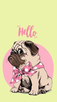 Imagenes de Pug tiernos In the event you are interested in a brilliant associate pet, Wallpaper Pug, Hello Wallpaper, Wallpaper Iphone Cute, Animal Wallpaper, Pug Cartoon, Pug Art, Pug Puppies, Pug Love, Funny Pugs