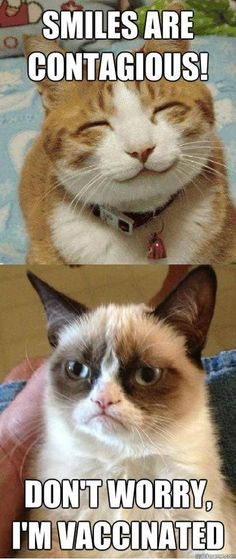 Random happy cat: Smiles are contagious! Grumpy Cat: Don't worry, I'm vaccinated.