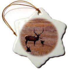 3dRose USA, Colorado. Elk in Rocky Mountain National Park., Snowflake Ornament, Porcelain, 3-inch