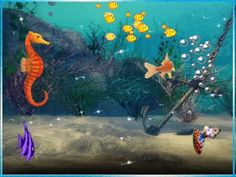 Comptine: Les petits poissons dans l'eau French Teacher, French Class, Teaching French, French Poems, Under The Sea Theme, Grammar And Vocabulary, Teaching Jobs, Story Video, Avril