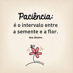 Paciência: é o intervalo entre a semente e a flor. Ana Jácomo.