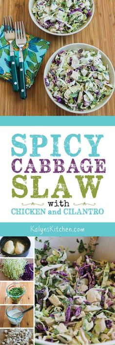 Spicy Cabbage Slaw with Chicken and Cilantro is a perfect hot-weather salad, and this is great to make with leftover rotisserie chicken. And this tasty salad is low-carb, gluten-free, dairy-free, South Beach Diet friendly, and with the right ingredient choices it can easily be Whole 30 or Paleo! [found on KalynsKitchen.com]