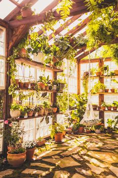 Greenhouse located in Virginia. Available for photographers to rent for sessions, elopements and vow renewals. Terrace Garden, Indoor Garden, Indoor Plants, Backyard Greenhouse, Greenhouse Plans, Dream Garden, Home And Garden, Room With Plants, Plant Rooms