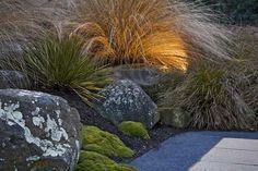 Landscape garden – native New Zealand design - Garten Landschaftsgestaltung Back Gardens, Small Gardens, Outdoor Gardens, Amazing Gardens, Beautiful Gardens, Bush Garden, Garden Grass, Alpine Garden, Sloped Garden