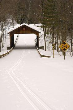 Snow Covered - Sleeping Bear Dunes National Park - Michigan
