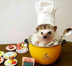 "~ ""Let's make some Breakfast!"" ~"