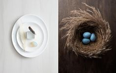 Kat Teutsch photographer | stills and interiors | 11