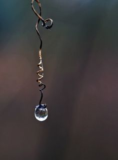 "isaac-lonetree: "" One Earring 