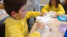 Treballem amb guants. Els científics hem de treballar amb seguretat. #TSC