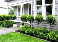 80 Easy and Cheap Landscaping Ideas for Your Front Yard That Will Inspire - All For Garden Cheap Landscaping Ideas, Outdoor Landscaping, Front Yard Landscaping, Front Garden Landscape, Hillside Landscaping, Garden Shrubs, Landscaping Software, Backyard Ideas, Front Yard Hedges