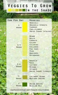 Garden chart for shade veggies