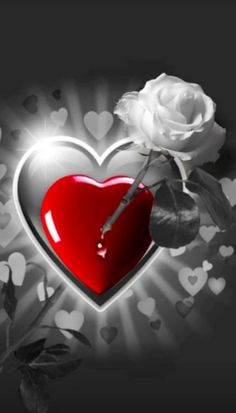 Beautiful Love Images, Love Heart Images, Love You Images, Romantic Images, Beautiful Flowers Wallpapers, Love Photos, Heart Iphone Wallpaper, Flower Wallpaper, Birthday In Heaven