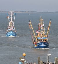 Webcams am Hafen Neuharlingersiel - Nordsee Livebilder