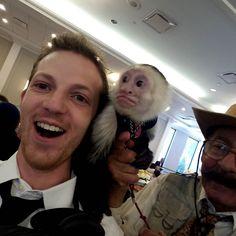 Say hello to Oscar the elvish magician  monkey! #asherlaub