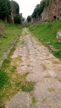 The Road goes ever on and onDown from the door where it began.Now far ahead the Road has gone,And I must follow, if I can,Pursuing it with eager feet,Until it joins some larger wayWhere many paths and errands meet.And whither then? I cannot say.