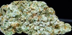 What's the strongest strain have you ever tried? Gorilla Glue #4 is a very strong strain of cannabis that is mainly grown in Colorado. It has up to 25% of THC content so if you feel that you need some self-medication, it can reduce chronic pain, treats arthritis and easing menstrual cramps for women when used properly. #MarijuanaDeliveryLosAngeles #MedicalMarijuana #MedicalMarijuanaForSaleOnline #BuyMedicalMarijuana #OnlineMedicalDispensary #OrderPotOnline