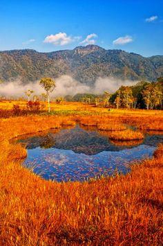 Осень в Озе, Японии  #мирпрекрасен #мир_необычного #amazing #пейзаж #beautiful #beautifulpictures #шедевры_вселенной #красивый_пейзаж #природа #красота #мирпрекрасен #beauty #beautiful #naturek #landscape