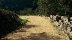 Paisaje senda del río Troncoso Country Roads, Scenery, Fotografia