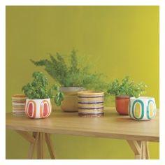 CADIZ Multi-coloured ceramic plant pot 13 x Window Box Plants, Window Boxes, Outdoor Planters, Planter Pots, Ceramic Plant Pots, Uk Homes, Cadiz, Container Plants, Indoor Garden
