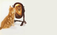 """Résultat de recherche d'images pour """"l'action est le moteur de la confiance en soi"""""""