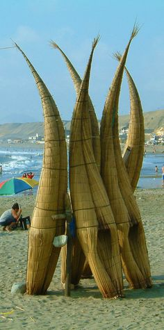 "The first surfboards were not hawaiian, they were Peruvian! Totora ""horses"" un Huanchaco beach, Trujillo, Peru"
