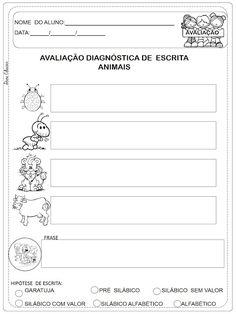 Avaliação diagnóstica Sondagem ilustrada