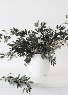 Add a natural touch to your home decor with these trendy artificial olive leaf branches. Simply style in your favorite oversized vase or include them in your faux floral arrangements! Shop fake branches and artificial plants at Afloral.com. Branch Centerpieces, Simple Centerpieces, Vase Arrangements, Fake Plants, Artificial Plants, Fake Flowers, Dried Flowers, Silk Flowers, Olives