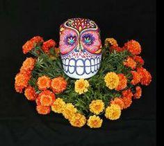 Authentic Dia de los Muertos Ofrenda supplies, incense burners, copal, marigolds, candle holders, good luck amulet bottles