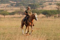 Where To Stay in Zambia : Destination Zambia--Kafue Horse Safari
