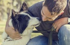 Some dogs have a problem with men. That's the long and short of it. As a guy, this isn't something to take personally, but it's understandable if the dog has suffered abuse at the hands of a man (not to say that men are always the ones abusing dogs — that's untrue) or if the dog has a behavioral alpha-male problem that causes him to dislike men. Either way, managing a dog's dislike of men does take some behavioral finagling and retraining, but it can be managed. #dogs #men #pets #canines