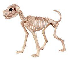 Crazy Bonez Skeleton Dog