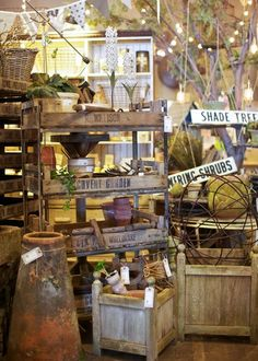 Potting Shed with Pallets for Shrubs and Trees!!